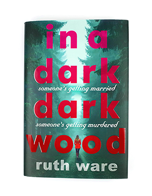 Top reviews for In a Dark Dark Wood!